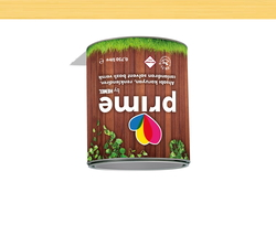 - Prime Solvent Wood Stain - Clear