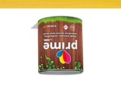 - Prime Solvent Wood Stain - Pine